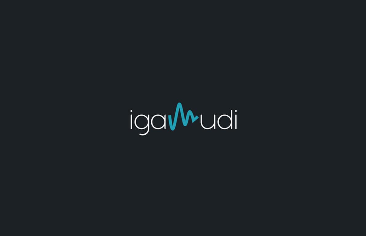 Igamudi, plataforma de patrocinio musical en Symfony2